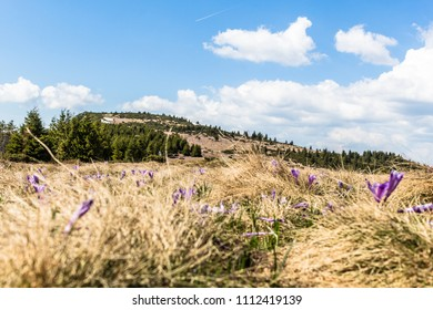 Mountains in spring with clouds