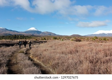 Mountains of Tongariro National Park, NZ