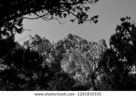 mountains, trees and sky (black and white)