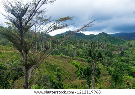 mountains and valley amid lush forest of cordillera central in jayuya puerto rico