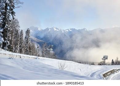 Mountains with white snow and trees, ski paths