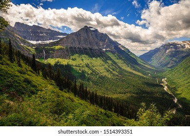 Mountains and Wildflowers of Glacier National Park on the Going-to-the-Sun Road, Montana