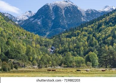 Mountains within Aiguestortes  National Park, Vall de Boi, Lleida, Catalonia, Spain