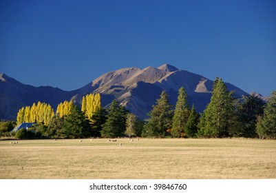 Mountains and yellow trees