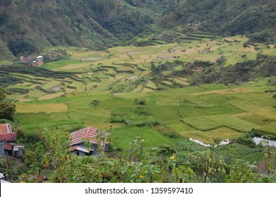 MOUNTAIN/SAGADA/PHILIPPINES/JUNE 2014: Sagada is colorful
