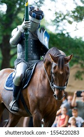 A mounted knight in shining armor readies his lance in preparation for combat. The flour-de-lis emblem on his shield.