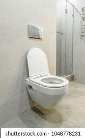 Mounted toilet bowl. Open toilet seat