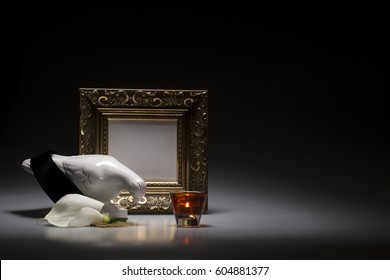 mourning dove with blank gold frame for sympathy card on dark background