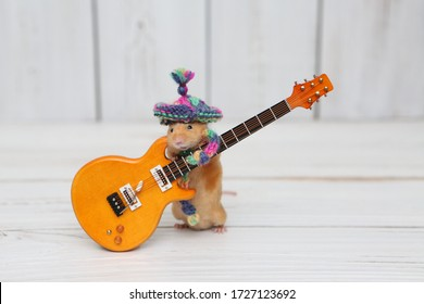 Сute mouse plays guitar, sings. Fun pet fond of music. Talented animal: home musician. Musical mouse celebrate. Mouse rock star on stage gives concert. Postcard with mouse. Talent. Celebration. Song