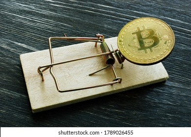 Mousetrap and bitcoin coin. Cryptocurrency scam or fraud concept.