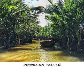 The mouth of the river in the palm forest. Fresh air and bright sun