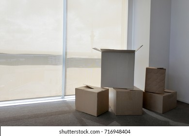 Moving boxes in empty apartment in Auckland city, New Zealand. Buy, sale, real estate, insurance, mortgage, bank loans and housing market concept. Real people. Copy space