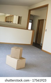Moving boxes into living room