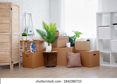 moving day and relocation concept - stack of cardboard boxes, houseplants and other domestic things in living room in new house