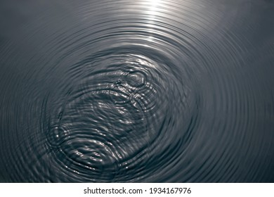 Moving water. Puddle with many circular raindrops
