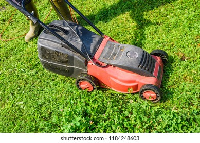 mowing the grass, mowing the lawn with lawnmower