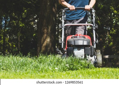 Mowing the grass with a lawn mower in garden at springtime. Cutting lawn at sunny day.