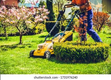 Rasenmähen Ein Mann mäht das Gras mit einem elektrischen Rasenmäher. Das Konzept, im Garten zu arbeiten und sich um die Schönheit des Gartens zu kümmern. Der Gärtner mäht das Gras mit einem Batteriemäher.