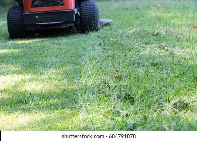 mowing the green grass zero turn mower nobody