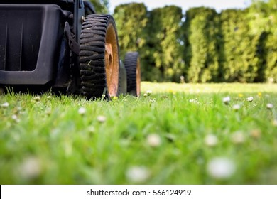 Mowing the lawn. Detail Motor mower is placed on a beautiful green lawn mowed, sunny day.