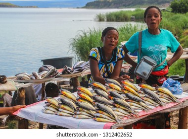 Mpulungu, Zambia - March 27, 2015: African women sell fresh fish on the counter of the street market.