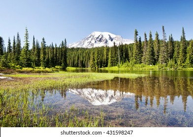 Mr Rainier and Reflection Lake with wildflower