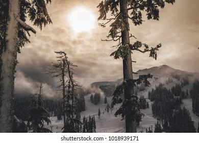 Mt Bachelor, Bend Oregon