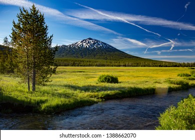 Mt Bachelor, looking accross Sparks Meadow in the Oregon cascade mountains on century drive near Bend, Oregon