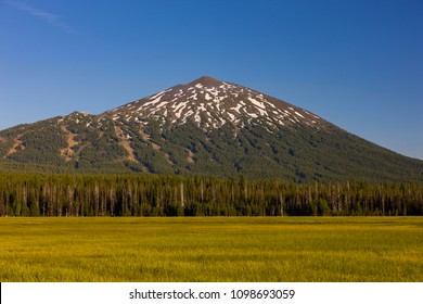 MT BACHELOR, OREGON, USA - JULY 13, 2009: Mount Bachelor, elevation 9,068 feet (2,764 meters), a volcano in the Cascade Range in Central Oregon.