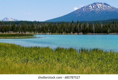 Mt. Bachelor overlooks Big Lava Lake with trees and reeds on its shores on a sunny summer afternoon in Oregon's Cascade Mountains.