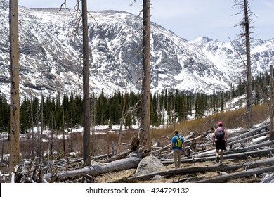 Mt. Evans Wilderness, Colorado USA