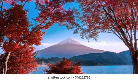Mt Fuji in Autumn color