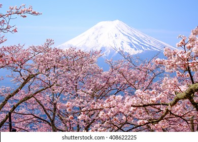 Mt Fuji and Cherry Blossom  in Japan Spring Season (Japanese Call Sakura ) Selective Focus