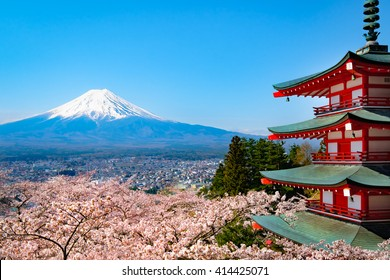 Mt. Fuji Cherry Blossom - Japan