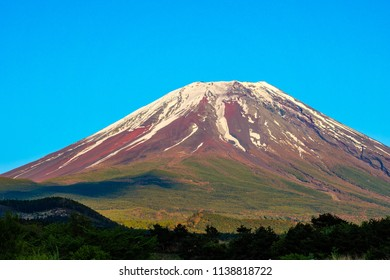 Mt. Fuji in Japan with green field