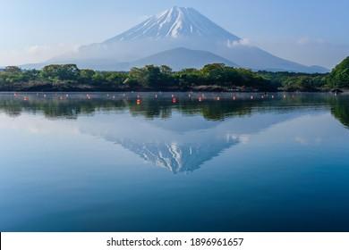Mt. Fuji in Lake Shoji, Yamanashi Prefecture, Japan