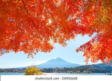 Mt. Fuji and red leaves