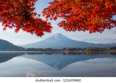 MT. FUJI  WITH RED MAPLE IN AUTUMN