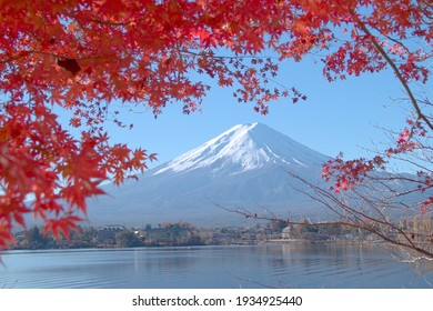 Mt. Fuji seen from inside the maple