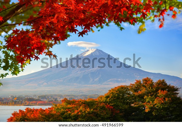 Mt. Fuji viewed with maple tree in fall colors in japan.