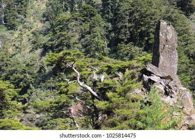Mt. Hehuan Main Peak Trail landscape in Nantou, Taiwan.