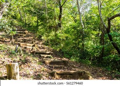 Mt. Kanuki hiking route
