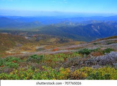 Mt. kurikoma leaves