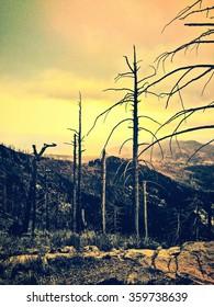 Mt. Lemon, Arizona