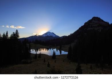 Mt Rainier National Park At Sunset