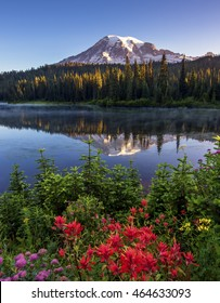 Mt Rainier Reflected in Reflection Lake.