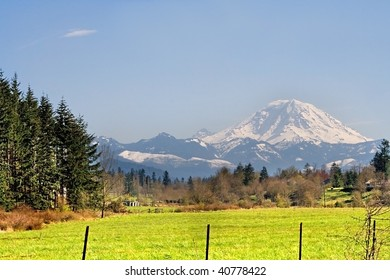 Mt. Rainier viewed from across a field in Washington State in the Pacific Northwest part of the United States.