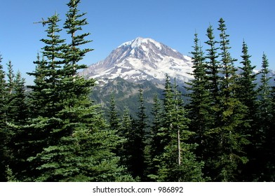 Mt. Rainier, Washington Through the trees