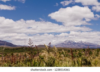 Mt Tongariro in the summer, the volcano mountain with snowy top under dramatic cloudy blue sky. Tongariro National Park in New Zealand