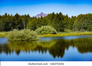 Mt Washington and a pine forest reflected in a small lake on Black Butte Ranch, central Oregon